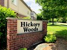 Hickory Woods