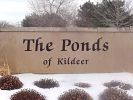 Ponds Of Kildeer