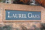 Laurel Oaks
