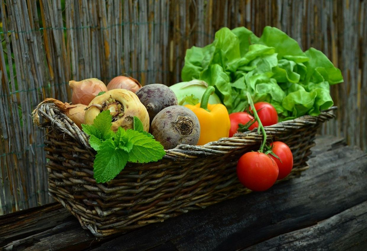 Getting Started on Your Home Garden