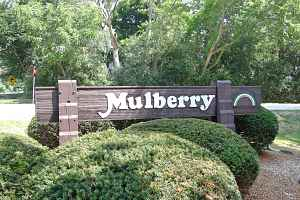 Mulberry Estates