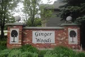 Ginger Woods