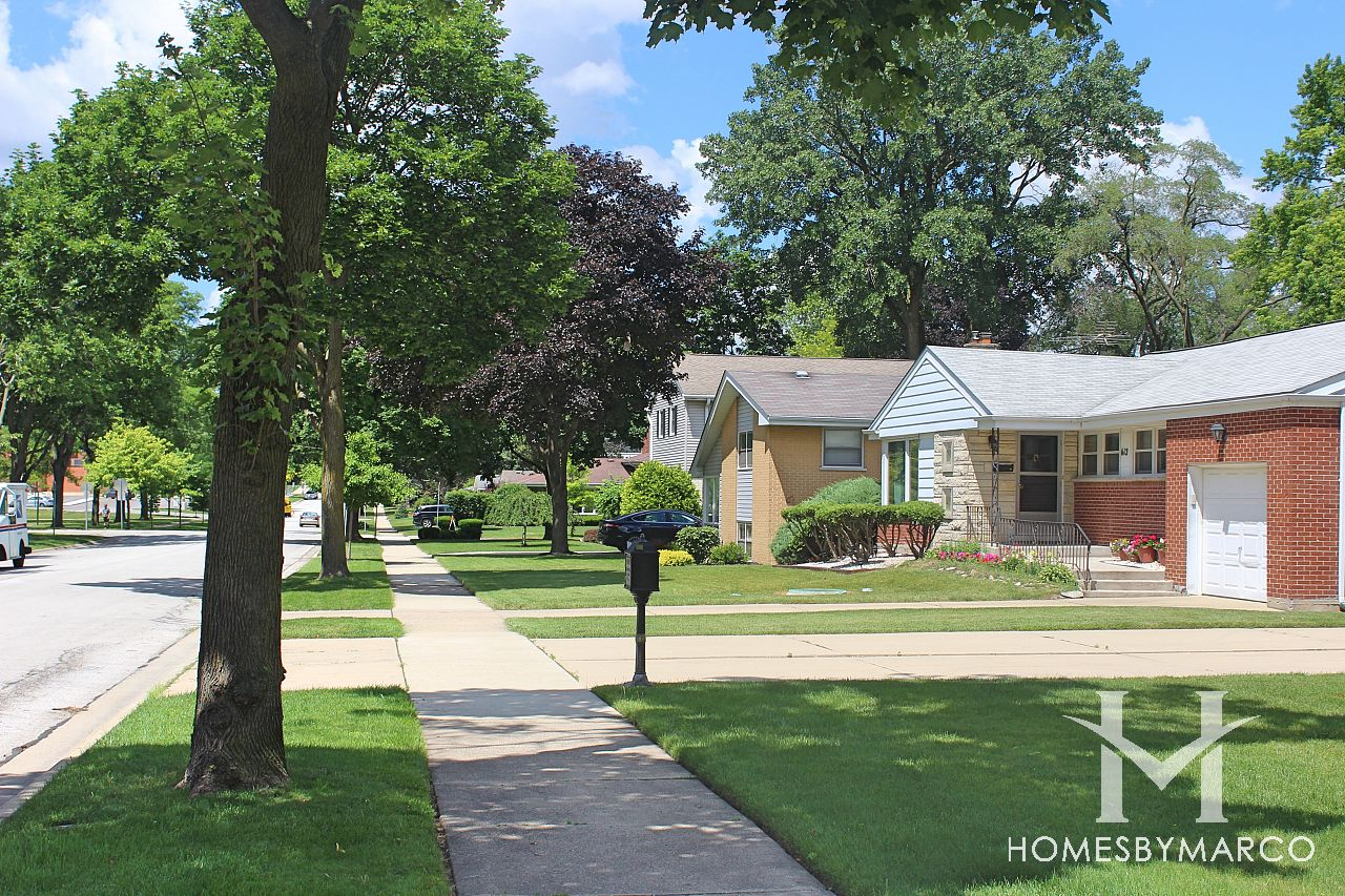 Homes For Sale Meadows Il