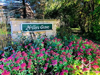 Millers Grove