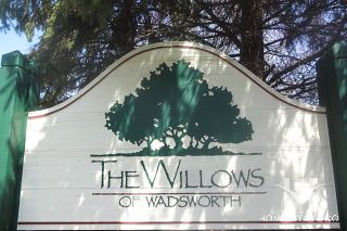Willows of Wadsworth
