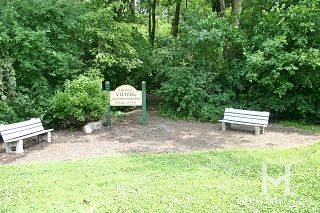 Cary Woods